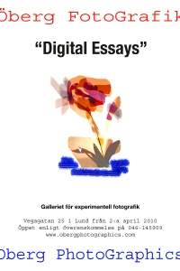 DigitalEssaysPOSTERA3+