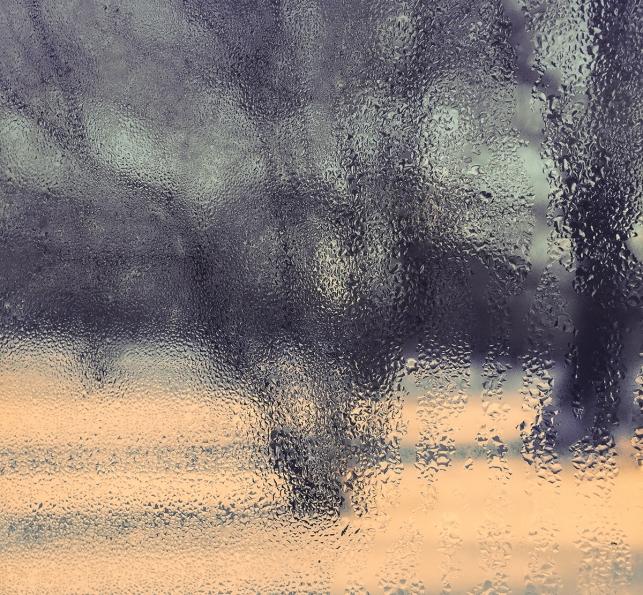 LandscapeDrops_1_PhSh